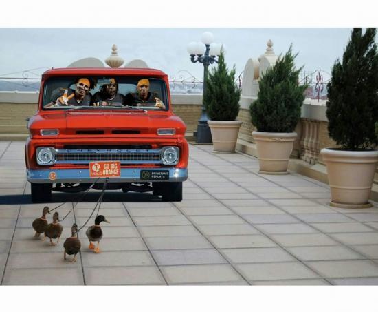 duck pulling the truck talk about the vols voltalk. Black Bedroom Furniture Sets. Home Design Ideas