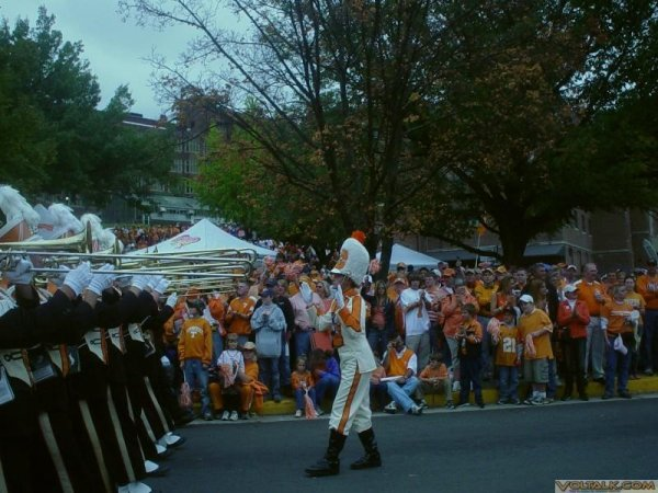 UT Drum Major